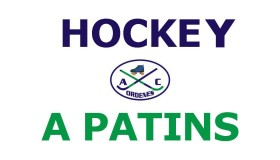 HOCKEY A PATINS